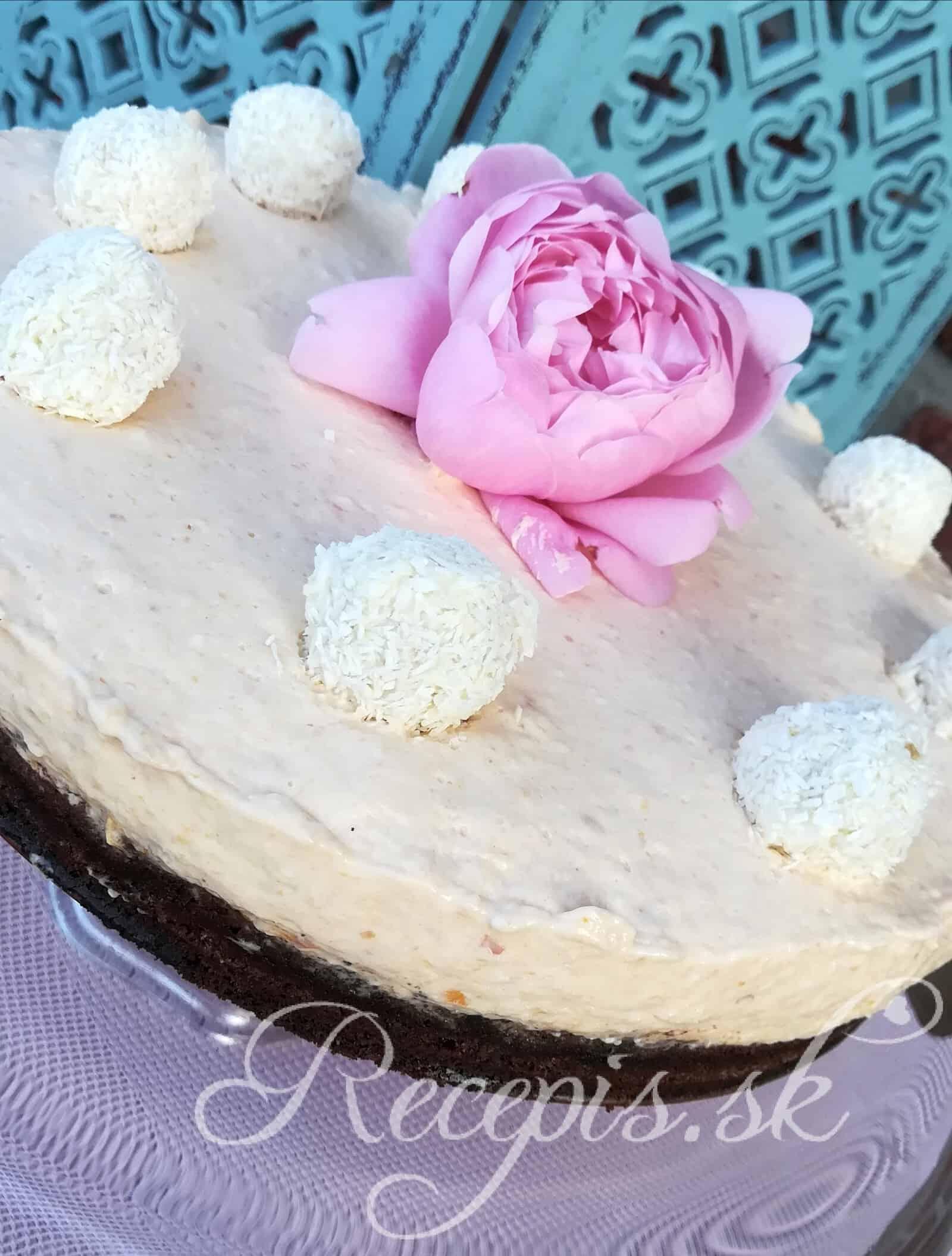 Marhuľový Cheesecake bez váženia